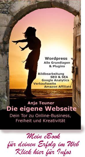 eBook die eigene Webseite Buch Wordpress